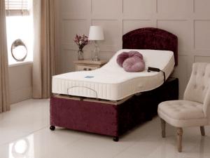 Bradshaw electric bed